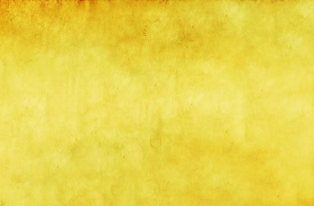 Golden Sunflower Texture