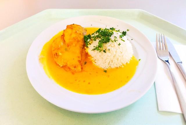 Chicken breast in apricot curry sauce with basmati rice / Hähnchenbrust mit Aprikosen-Currysauce & Basmatireis