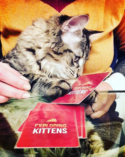 Exploding kitten #play #fun #life #home #funny #cards #cat #kitten #kittens #explodingkittens #amazing #followme #igers #igersitalia #igersmilano #pets #petstagram #instagood #photo #colorful | by Mario De Carli