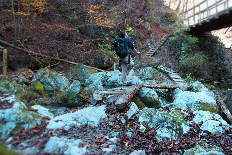 武甲山の登山道