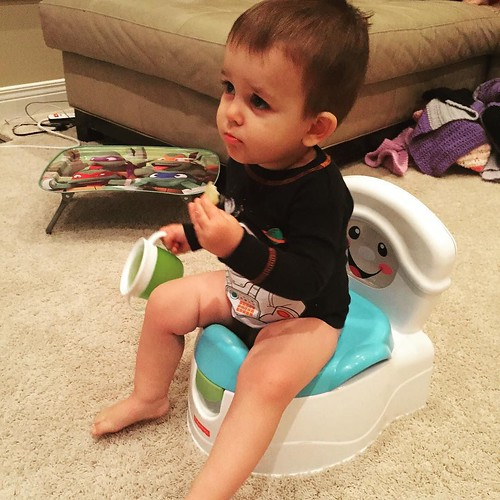 Quentin has started potty training!