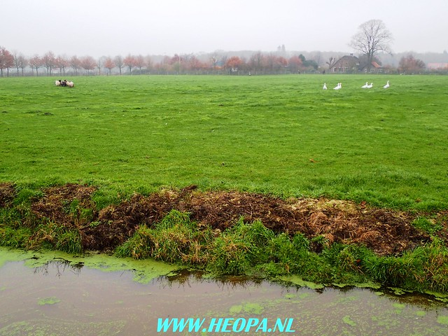 2017-11-29 Driebergen 25 Km  (53)