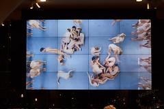 _2017-11-03_Stedelijk-Museum_Tomek-Dersu-Aaron_127