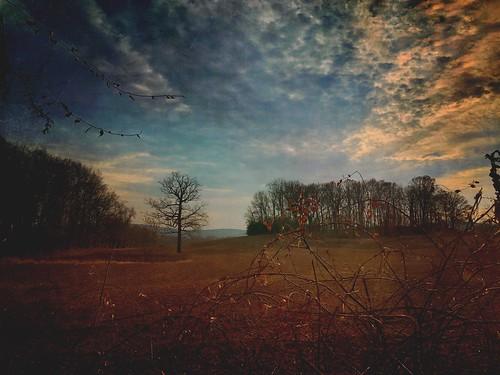 nature mextures pennsylvania landscape