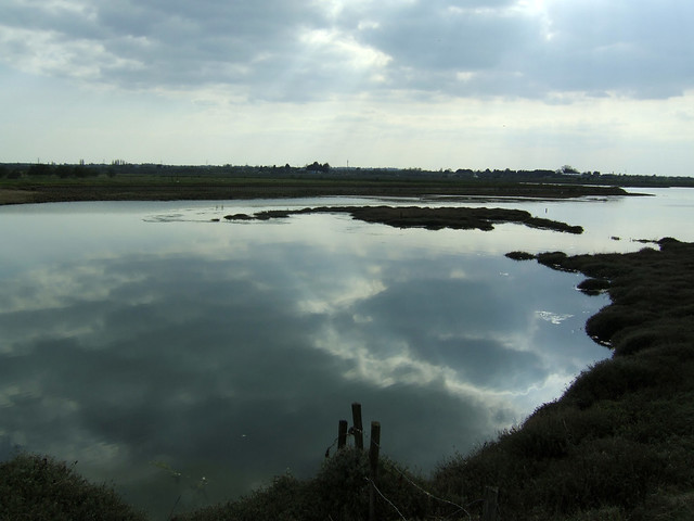 Mayland Creek, Essex