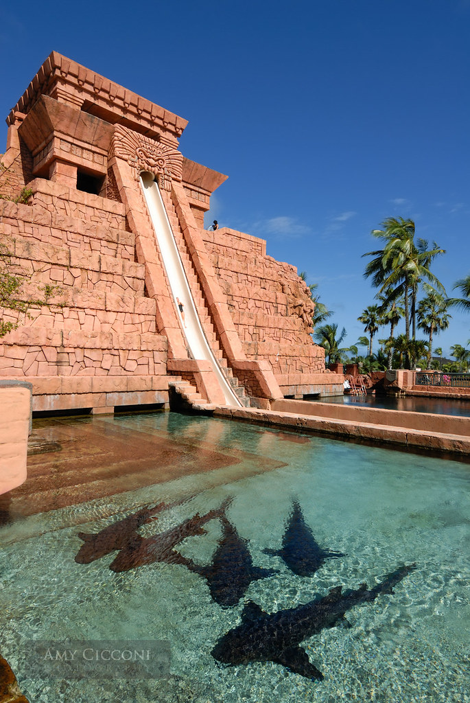Water Slide At The Mayan Temple Atlantis Resort Five Larg