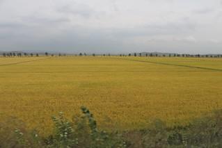 Landscape in North Korea | by Timon91