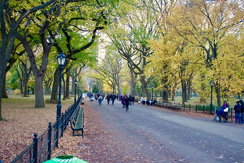 Poets Walk, Central Park | by subherwal