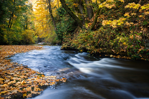 Millstone River   by Bryn Tassell