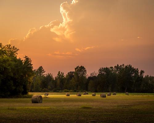 canoneos5dmarkiv ef24105mmf4lisusm hay field hayfield roundbale bales sunset michigan mi midland midmichigan