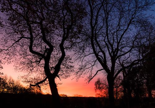 canon eos 1300d efs1018mm sunrise dawn huddersfield yorkshire england gb unitedkingdom landscape outdoors morning
