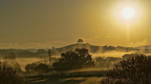 Morning mist - Brumes matinales