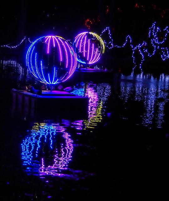 Swan Lake Reflections