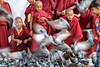 Boudhanath Stupa young monks and pigeons
