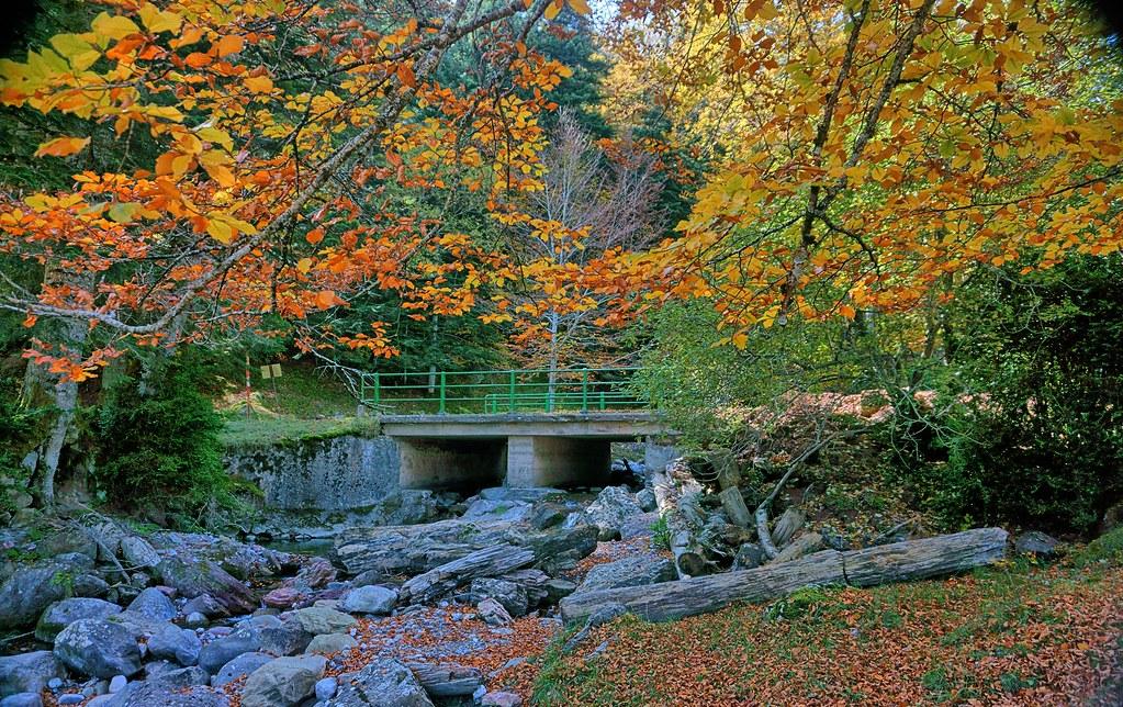 Entrada A La Selva De Oza Huesca Pirineos España Flickr