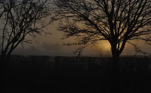 exposureadjusted straightened mist sunrise tarporley cheshirewestchester winterlight chesterchronicle281217