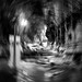 Going out..Batu Caves, Gombak, Selangor.. by anak tok we jusoh n mok we yah