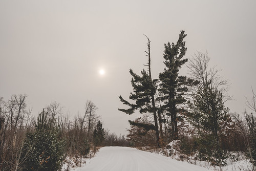 december minnesota saintcroixstateforest stcroixstateforest tamarackforestroad road snow stateforest sun sunset trees winter hinckley unitedstates us