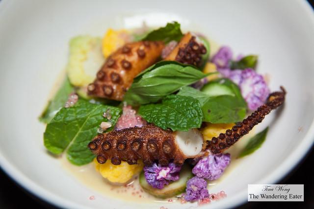 Crispy octopus, cauliflower, green curry, mint