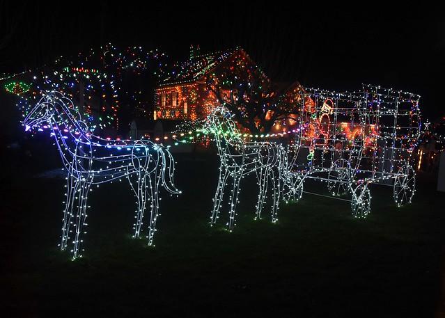 DSC_2580=1lights: Merry Christmas
