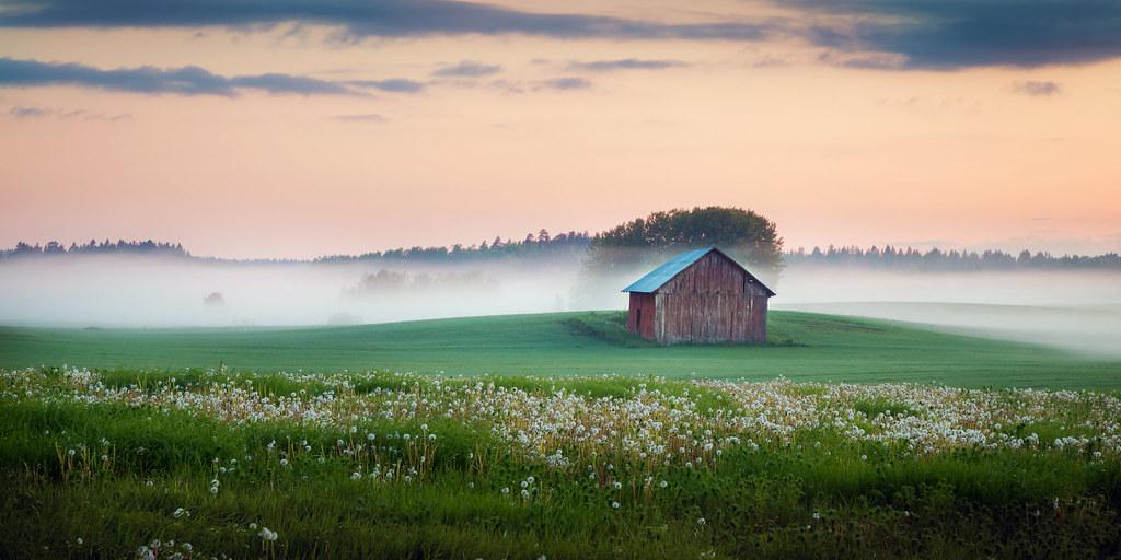 Midsummer day dawning