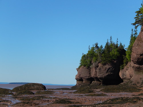 Hopewell Rocks - 2
