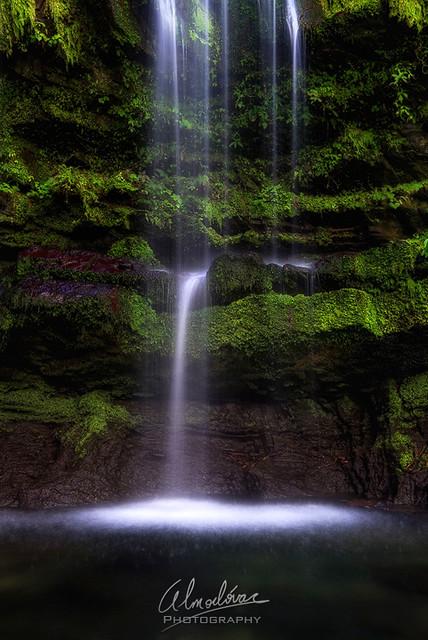 Flowing Serenity...