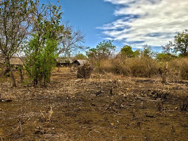 Madagascar8 - 066.jpg