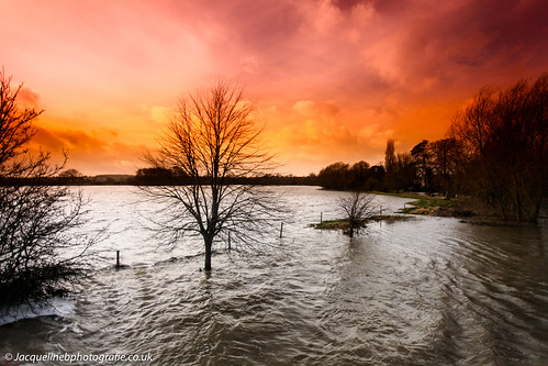 countryside nature climatechange weather floods newyear2017 bedfordshire bedford harrold countrypark water trees sky sunset storm stormchaser river greatouse jacquelinebphotografiecouk jacquelinebaxter