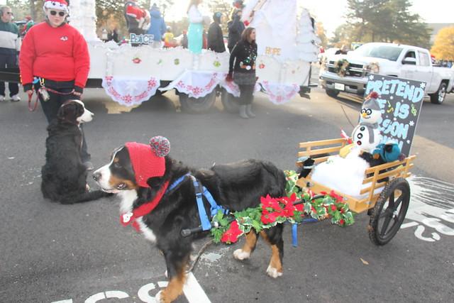 2017 Christmas Parade In Williamsburg Virginia