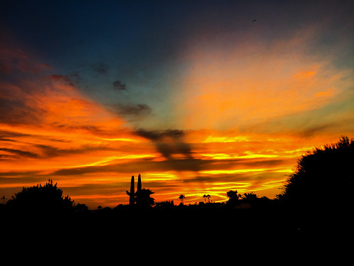 arizona sunset winter sky cloud outdoor dusk serene field landscape bright skyline tree grass sun city west colorful color tonight monsoon weather clouds summer fall silhouette colros sunshower shower backyard nikon cactus hardtosee amazing