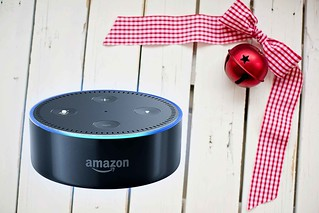 Fun Things That You Can Ask Alexa About Christmas | by methodshop.com