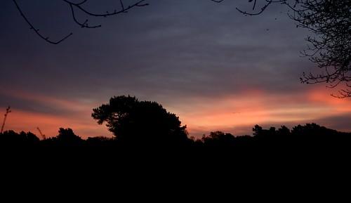 dawn 2018 surrey tadworth walton heath sunrise sun sky morning britain british new years day english england