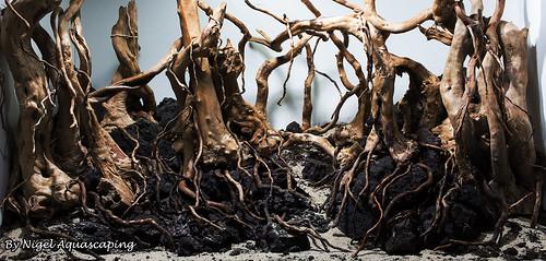 hardscape 7  forest aquascape by nigel aquascaping | by nigel_kh