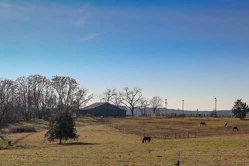 canon 6d sigma 50mm14 art lens upstate oconee southcarolina rural farm barn pasture horse grazing vanishing vintage classic southernlife southern america usa scenic pastoral landscape