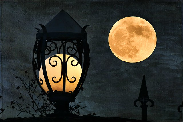 strangers in the night . . .