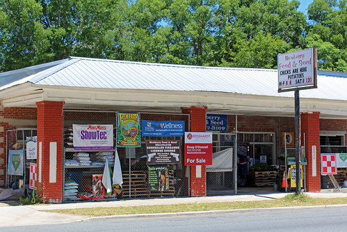 commercialbuilding store feedstore architecture signage newberry florida