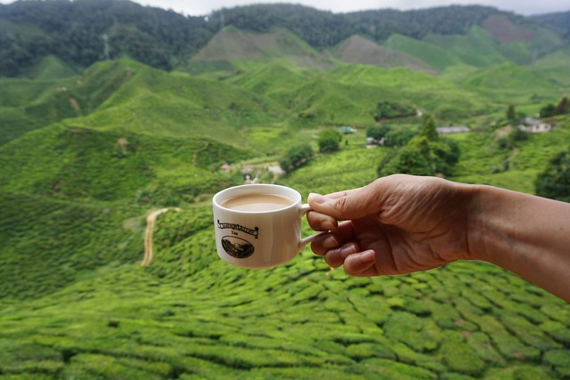 Cameron Highlands - Malaysia