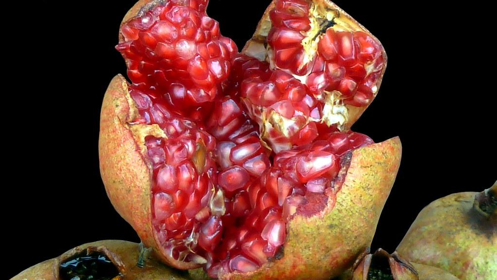 India Uttar Pradesh Gorakhpur Pomegranate 31d Flickr