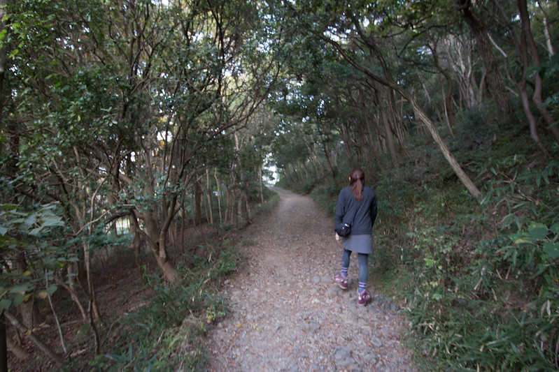20161106_飯野山(讃岐富士)_0039.jpg