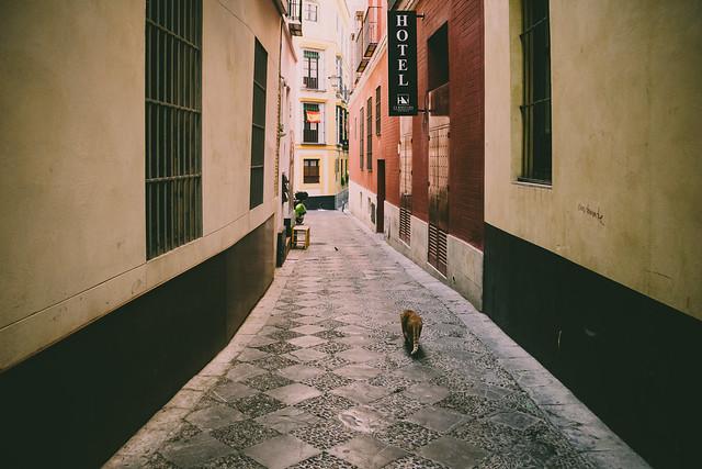 En las calles de mi ciudad