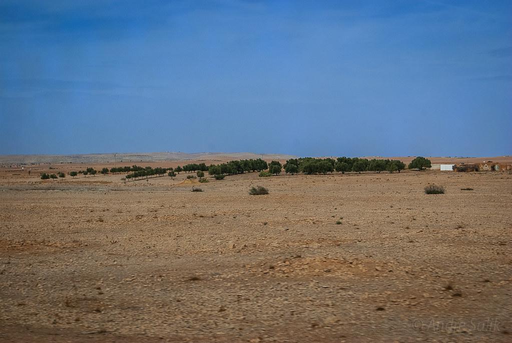 Morocco, Марокко  15:06:20 DSC_2943