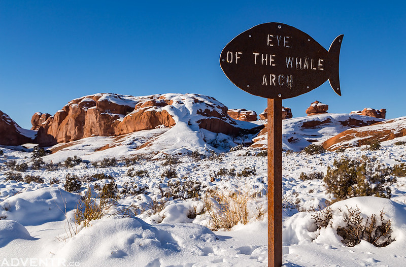 Eye of the Whale Trailhead Sign