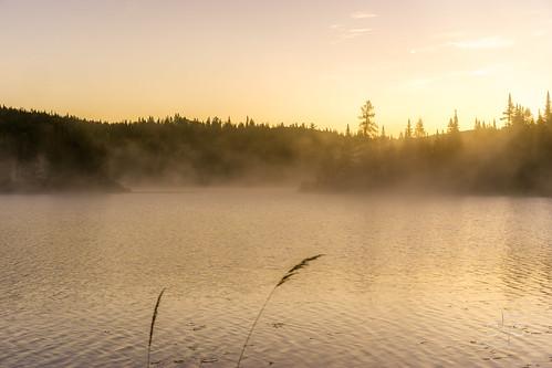 bluehour canada fog lake nebel parcnationaldumonttremblant québec sonyalpha7ii sonyfe55mmf18za sun sunrise water