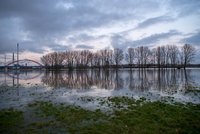 Hochwasser am Duisburger Rhein