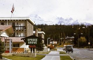 Spruce Grove 1974