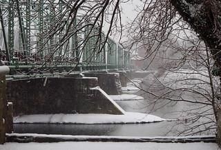 Bridge through the branches