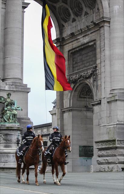 Patrouille et promenade (191/365)