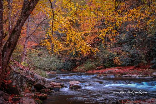 stream mountain mountainstream fall colors fallcolors autumn northcarolina andrews rural country usa landscape