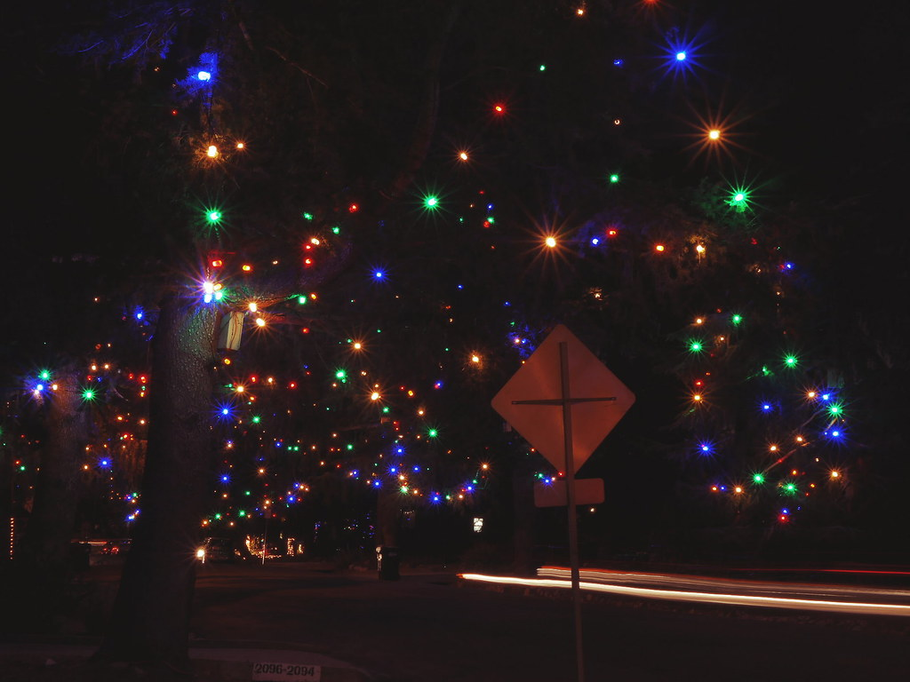 Christmas Tree Lane In Altadena Lumix Altadena Losangel Flickr